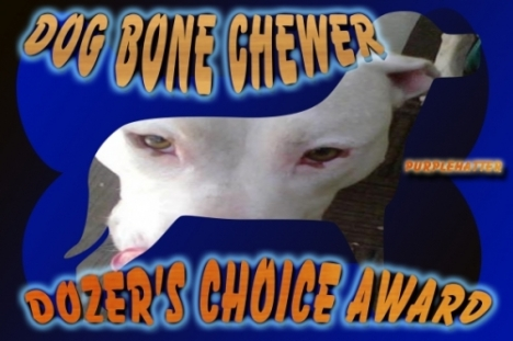 dozers-choice-award